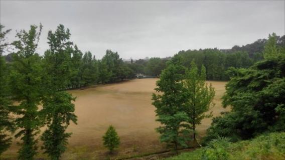 雨天で活動中止でした…